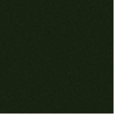 Фиброцементный сайдинг гладкий Cedral Click Smooth Зеленый Океан (С31)