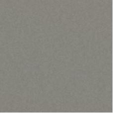 Фиброцементный сайдинг гладкий Cedral Click Smooth Жемчужный Минерал (С52)