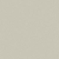 Фиброцементный сайдинг гладкий Cedral Smooth Зимний Лес (С07)